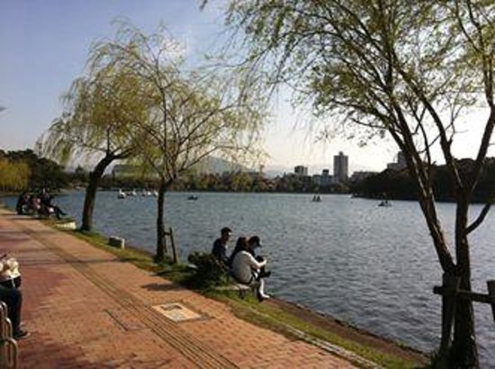 Ohori Park: relaxing by the park lake