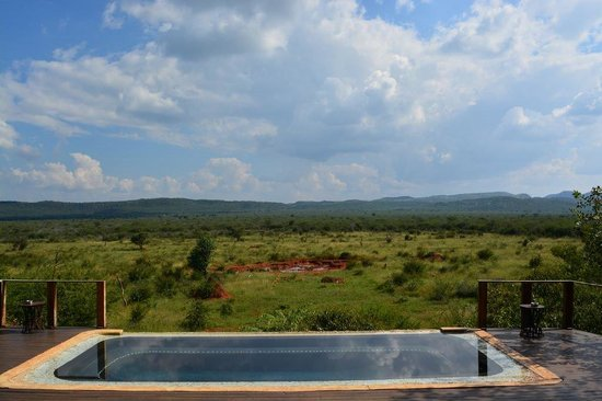 Madikwe Hills Private Game Lodge: Lodge pool with view of waterhole