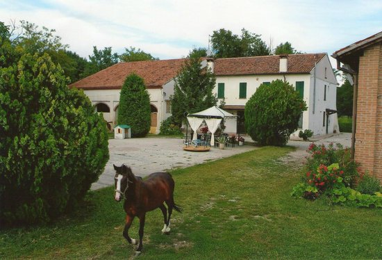 Agriturismo Loghino Caselle