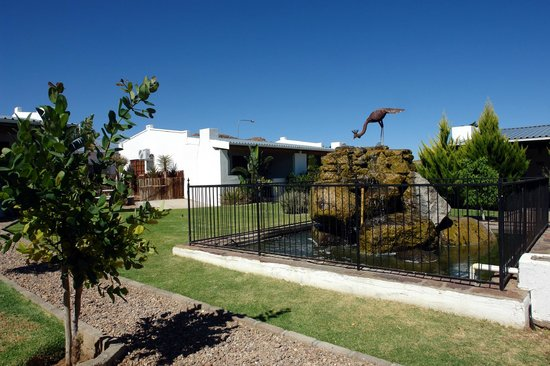 Kleinplasie Guesthouse : We have a well maintained garden with lots of birdlife