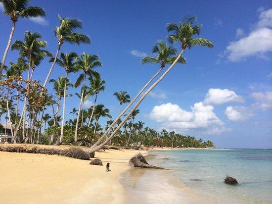 Grand Bahia Principe El Portillo : Left side od the beach
