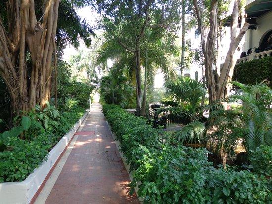 Hotel Caribe : Jardines interior