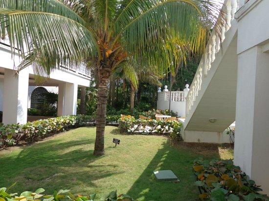 Hotel Caribe : Jardin interior del hotel