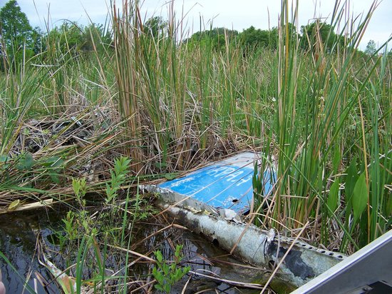 Airboat Wildlife Adventures: Captain Jon really wasn't an airplane pilot, he was joking.
