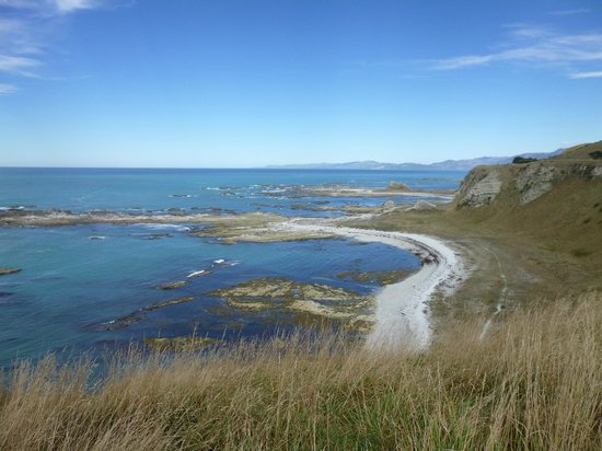 Kaikoura Peninsula Walkway: the walk at beach level