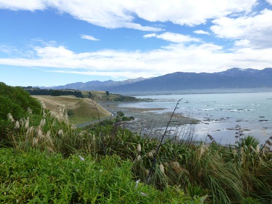 Kaikoura Peninsula Walkway: gorgeous views