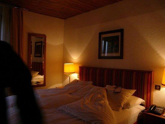 Grand Hotel Regina Grindelwald : Room