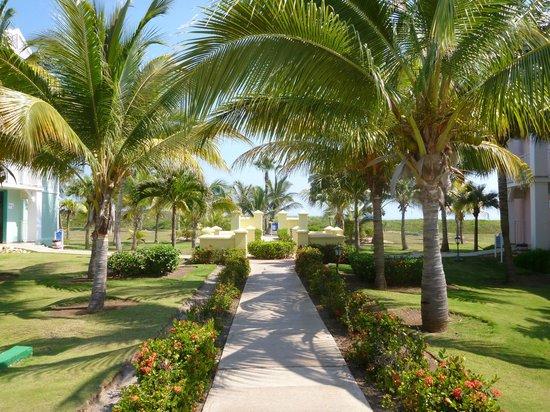 Blau Marina Varadero Resort: Typical view of the pathways