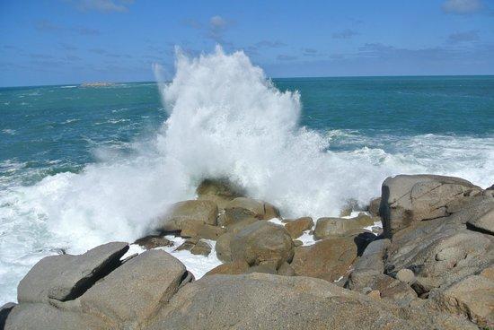 Granite Island - Victor Harbour: Splash