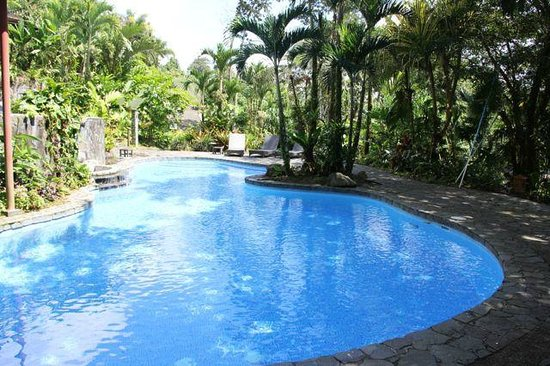 Lost Iguana Resort & Spa: Swimming Pool