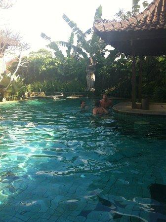 Ubud Bungalow: piscine