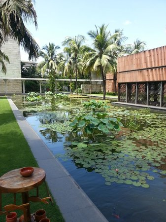 ITC Sonar: Beautiful pond