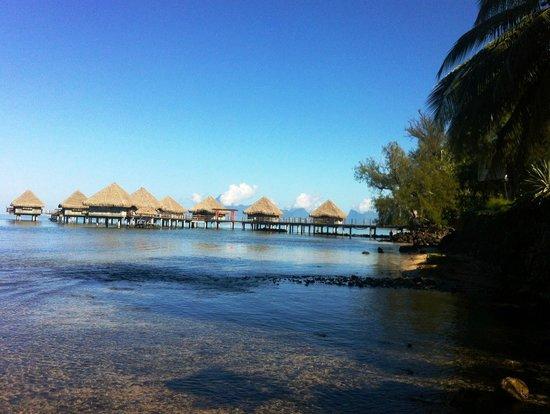 Photo of Armelle - Pension Tahiti