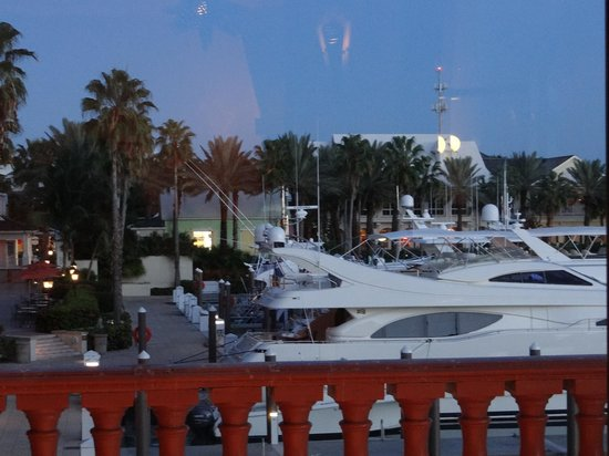 Atlantis Paradise Island - Atlas Grill & Bar: vue de notre table