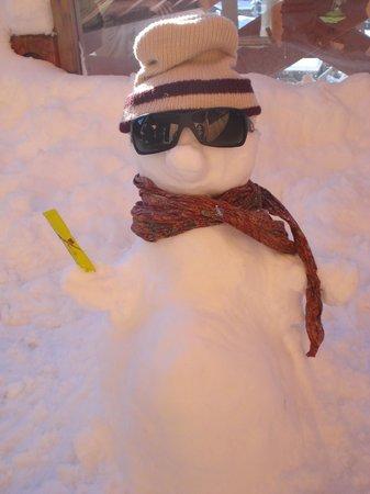 Hotel  Grandes Rousses : Snow Beto