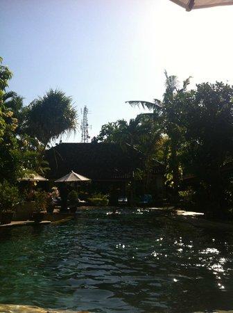 Tamukami Hotel: piscine
