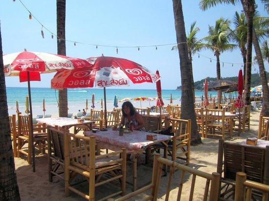 Coconut garden: La terrasse