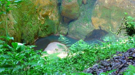 Clara Cave (Cueva Clara)
