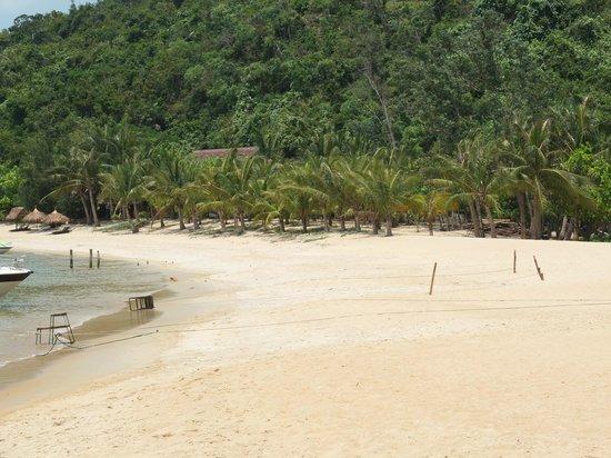 Palm Garden Beach Resort & Spa: Cham Islands Day Trip