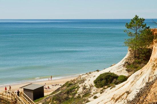 Algarve Motorhome Park Falesia