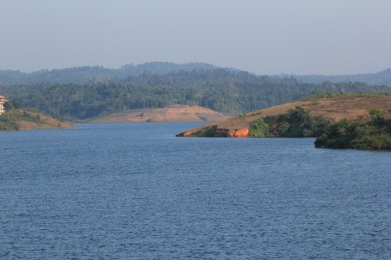 Image result for karapuzha