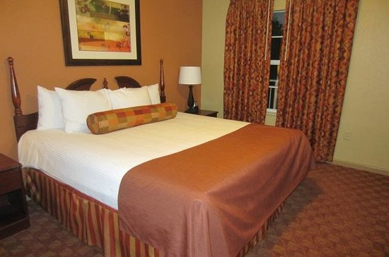 Wyndham Nashville: Our Room (one bed w pull-out-sofa)