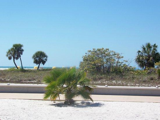 Treasure Island Ocean Club: Looking toward the beach from the pool area