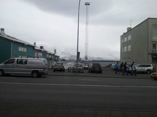 Icelandic Fish & Chips : View from our table