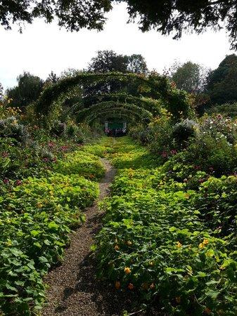 Maison et jardins de Claude Monet : Jardines en giverny