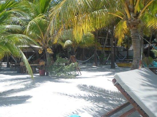 Holbox Hotel Mawimbi : Restaurant 2