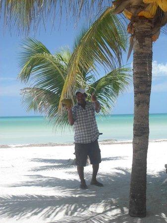 Holbox Hotel Mawimbi : Coconut seller