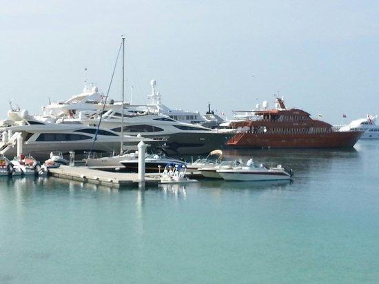 Jumeirah Beach Hotel: Ships in the marina