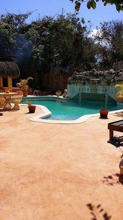 Catcha Falling Star Gardens : pool