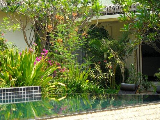 Blue Bird Hotel: Garden