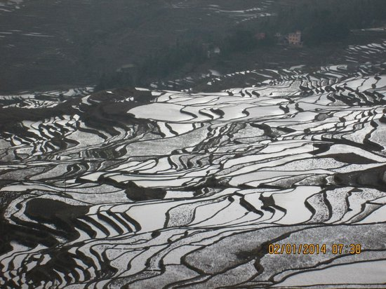 Yuanyang Rice Terraces: Terraces at the Tiger Mouth