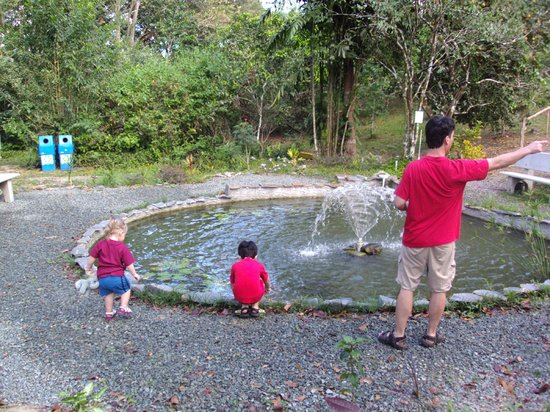 Adventure Eco Villas: Playing at the fish pond