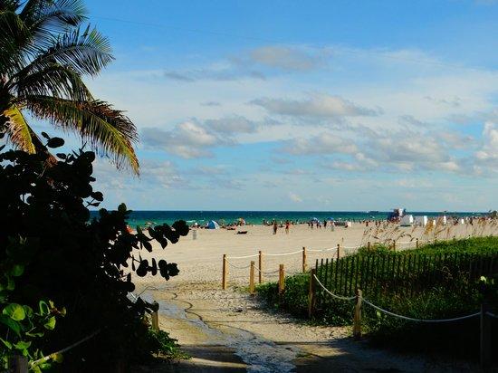 South Beach : une plage de rêve