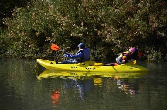 San Esteban, Χιλή: Paseo en kayac.