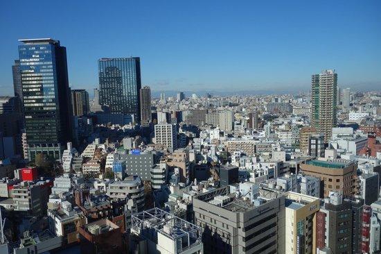 Shinjuku Prince Hotel : view