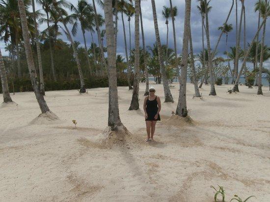 Luxury Bahia Principe Bouganville Don Pablo Collection : Plage désertée, toute plate,aucune épaisseur de sable !!!