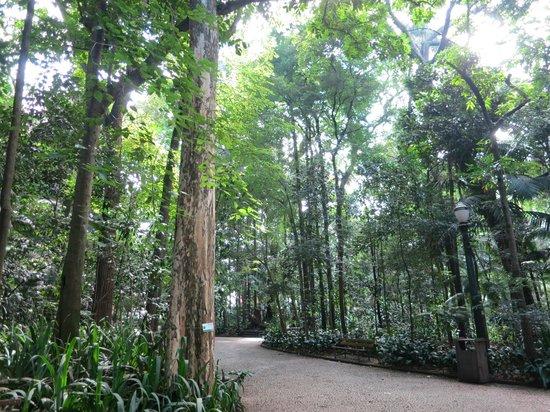 Tenente Siqueira Campos Park (Trianon): Parque Tenente Siqueira Campos