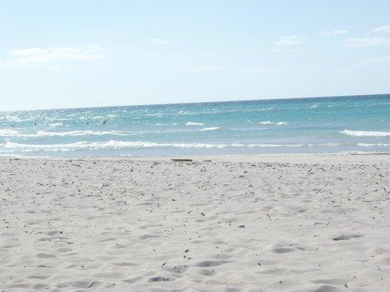 Blau Varadero Hotel Cuba: vue de notre plage