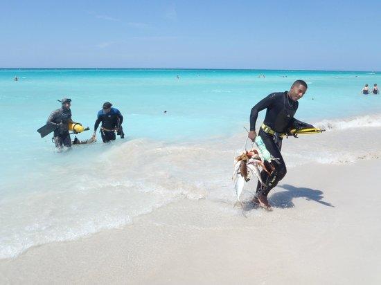 Blau Varadero Hotel Cuba: pêcheurs en apnée