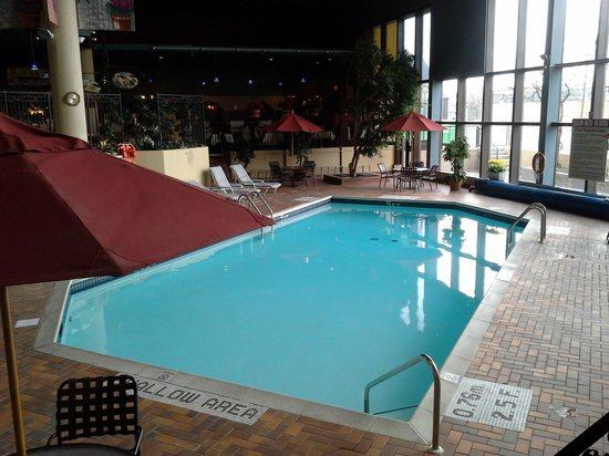 Holiday Inn Toronto Yorkdale: pool