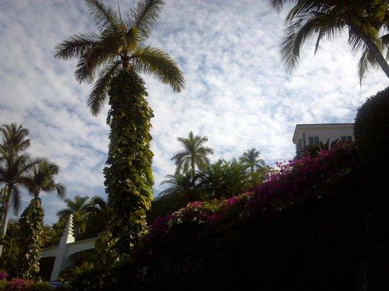 The Grand Mayan Acapulco: scenery