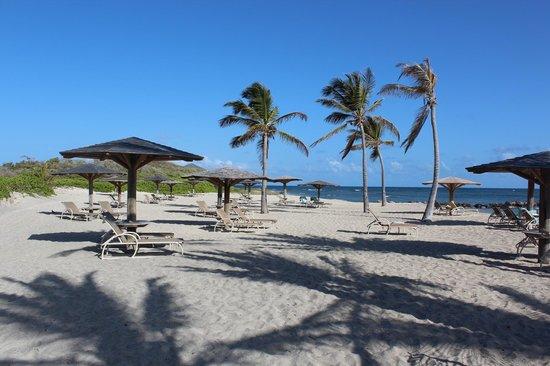 Nisbet Plantation Beach Club : The beach