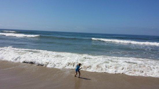 Hyatt Regency Huntington Beach Resort & Spa : Beach in front of the hotel