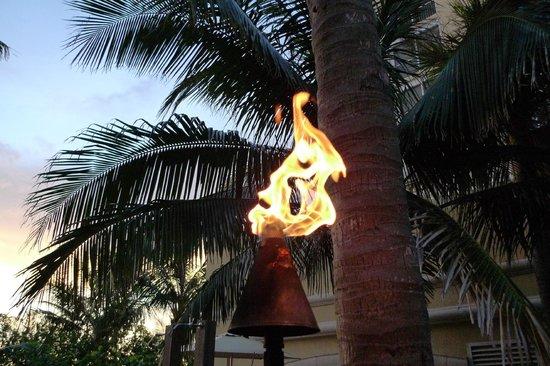 Vanderbilt Beach Resort: Torch on walkway to Turtle Club