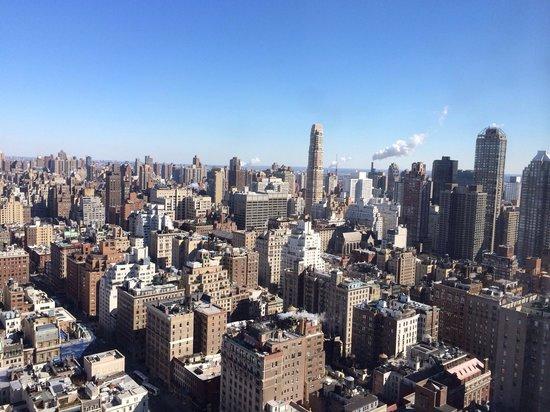 The Pierre, A Taj Hotel, New York : Vista do quarto! Room's view!