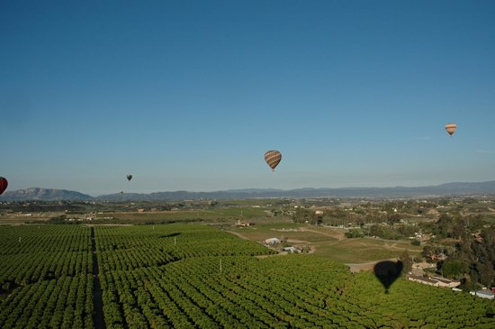 SunRise Balloons: Great day for floating above the vineyards to Temecula